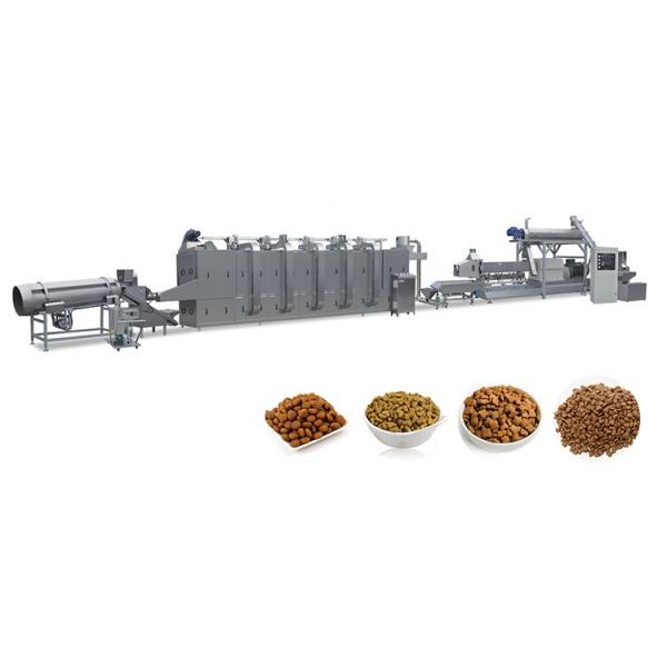Twin Screw Dog Food Extruder Pet Food Pellet Making Machine Fish Feed Production Line