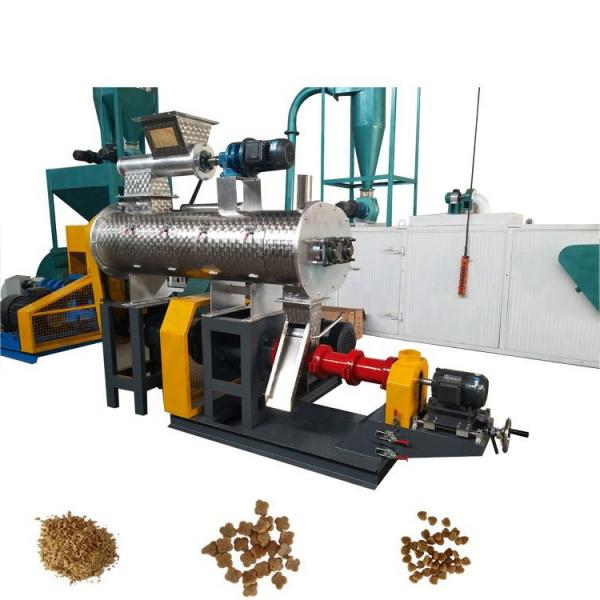 Large Capacity Stainless Steel Dog Food Manufacturing Machine