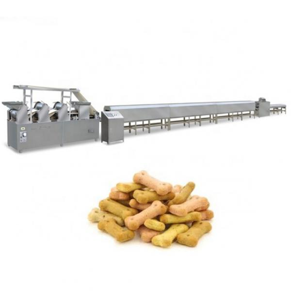 Small yield automatic biscuit making machine cracker biscuit maker